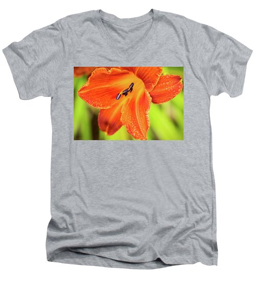 Orange Lilly Of The Morning Men's V-Neck T-Shirt by Ken Stanback