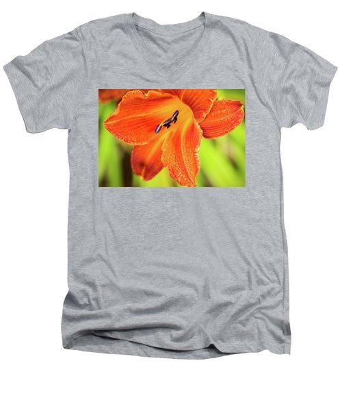 Orange Lilly Of The Morning Men's V-Neck T-Shirt