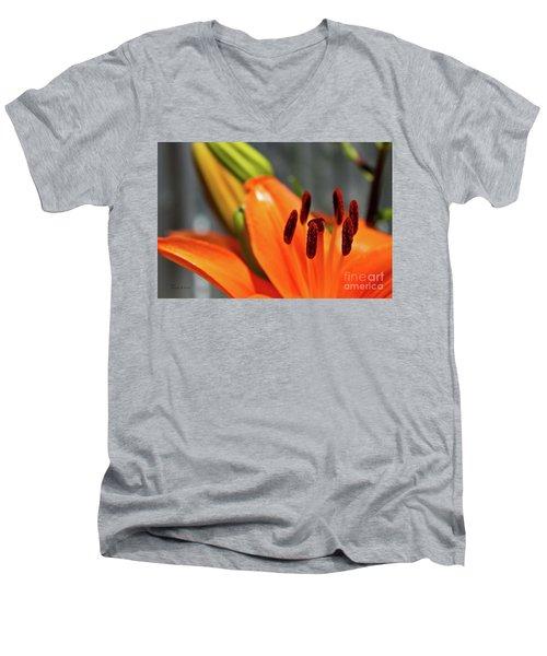 Orange Lily Close Up Men's V-Neck T-Shirt