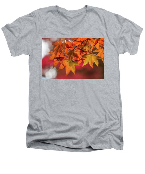 Men's V-Neck T-Shirt featuring the photograph Orange Maple Leaves by Clare Bambers