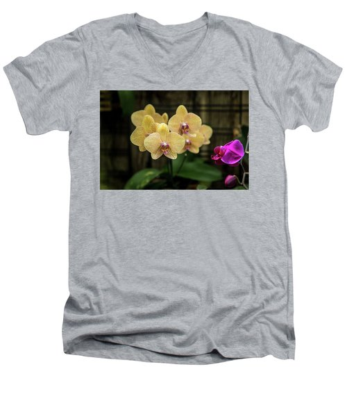 Orange Orchids Men's V-Neck T-Shirt