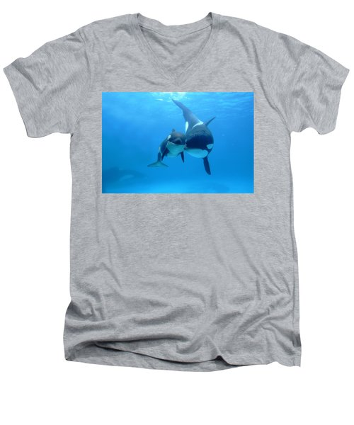 Orca Orcinus Orca Mother And Newborn Men's V-Neck T-Shirt