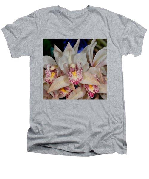 Orchid 348 Men's V-Neck T-Shirt