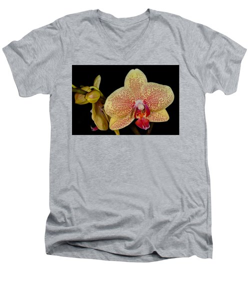 Orchid 377 Men's V-Neck T-Shirt