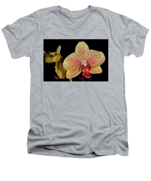 Orchid 377 Men's V-Neck T-Shirt