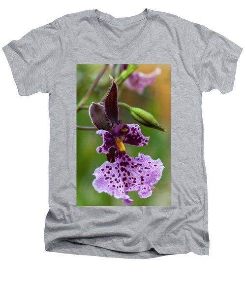 Orchid - Caucaea Rhodosticta Men's V-Neck T-Shirt