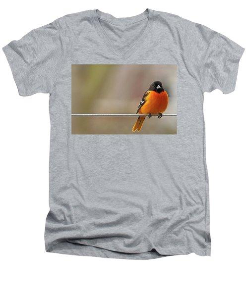 Oriole On The Line Men's V-Neck T-Shirt