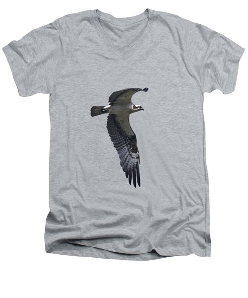 Osprey In Flight 2 Men's V-Neck T-Shirt