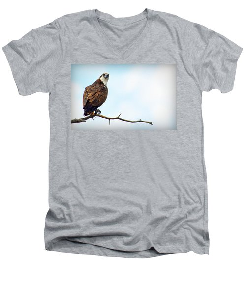 Men's V-Neck T-Shirt featuring the photograph Osprey Out On A Limb by AJ Schibig