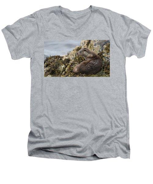 Otter Relaxing On Rocks Men's V-Neck T-Shirt