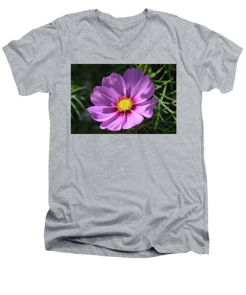 Men's V-Neck T-Shirt featuring the photograph Out In The Sun. by Terence Davis