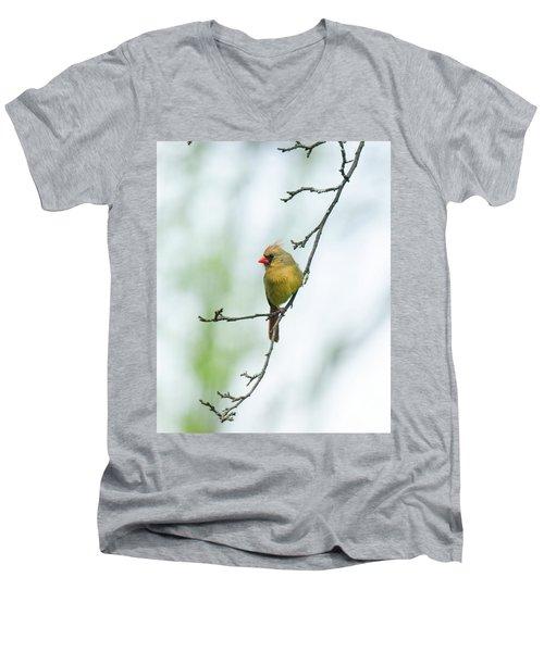 Out On A Limb 2 Men's V-Neck T-Shirt