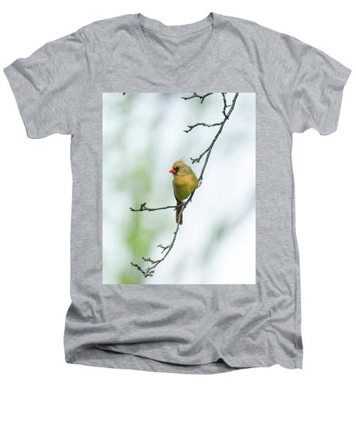 Out On A Limb 2 Men's V-Neck T-Shirt