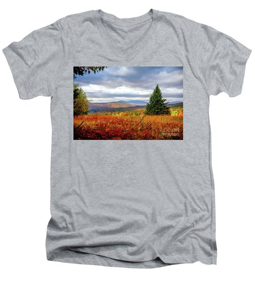 Overlooking The Foothills Men's V-Neck T-Shirt