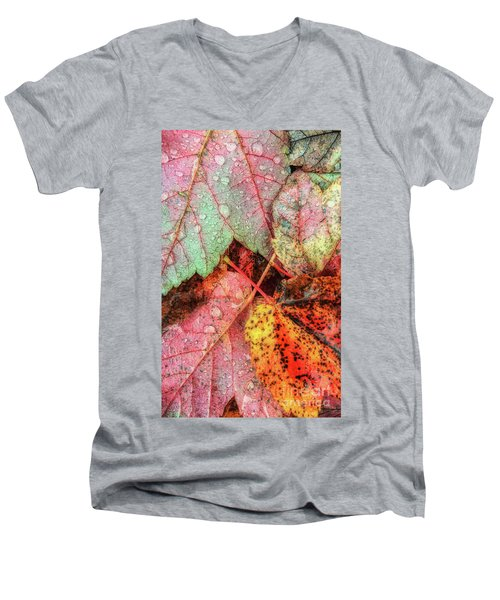 Overnight Rain Leaves Men's V-Neck T-Shirt