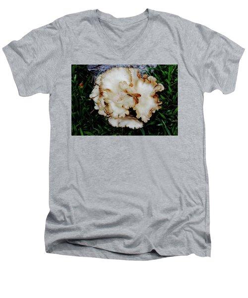 Oyster Mushroom Men's V-Neck T-Shirt