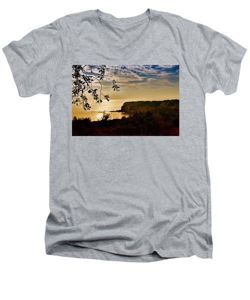 Pacific Cove Paradise Men's V-Neck T-Shirt by Joseph Hollingsworth