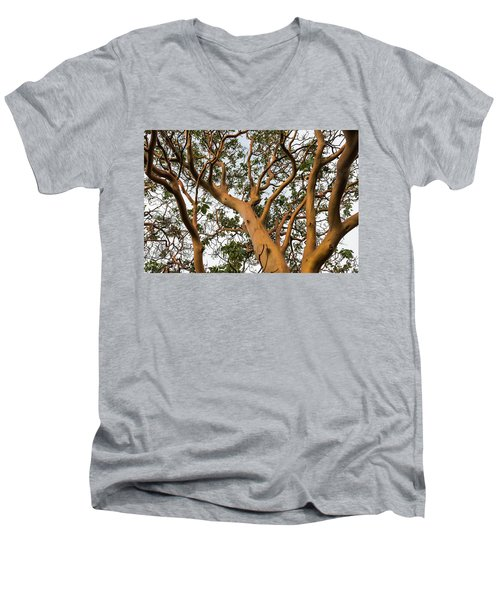 Pacific Madrone Trees Men's V-Neck T-Shirt