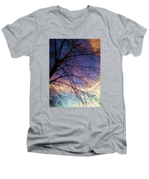 Paintbrush Iv Men's V-Neck T-Shirt