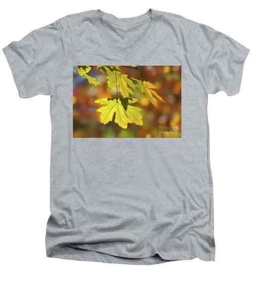 Painted Golden Leaves Men's V-Neck T-Shirt