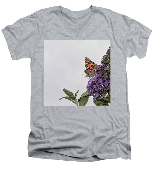 Painted Lady (vanessa Cardui) Men's V-Neck T-Shirt by John Edwards