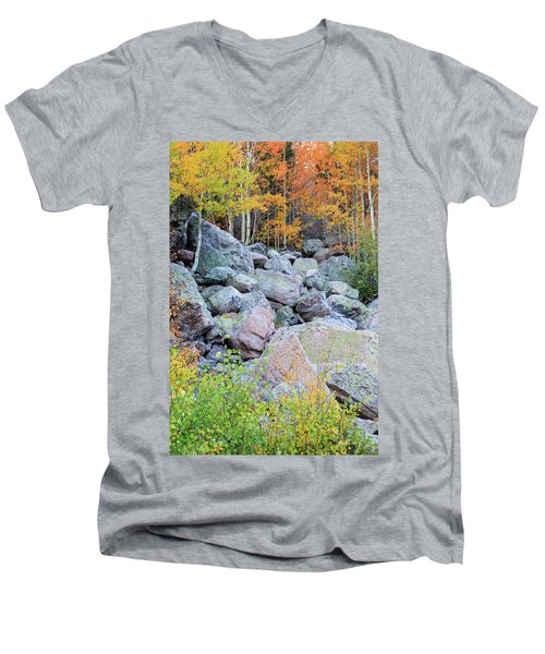 Men's V-Neck T-Shirt featuring the photograph Painted Rocks by David Chandler
