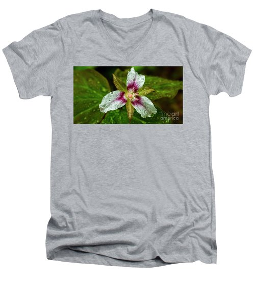 Painted Trillium With Raindrops Men's V-Neck T-Shirt