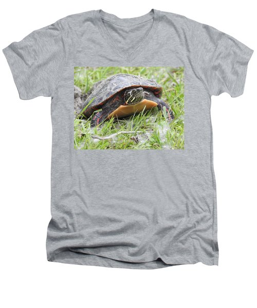Men's V-Neck T-Shirt featuring the photograph Painted Turtle by Betty-Anne McDonald