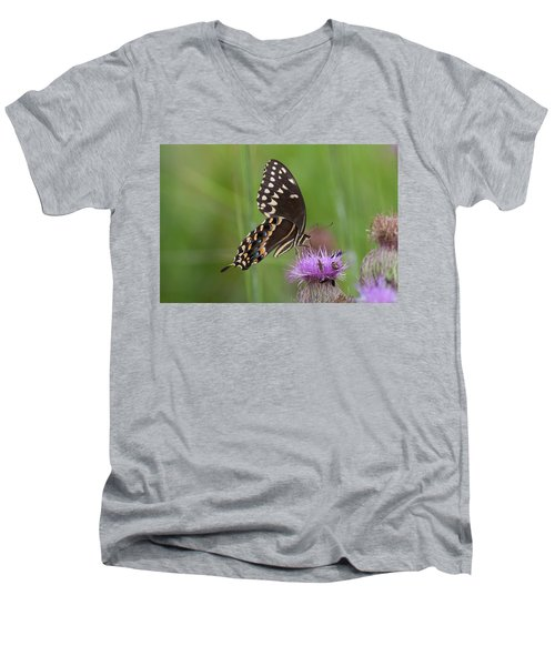 Palamedes Swallowtail And Friends Men's V-Neck T-Shirt