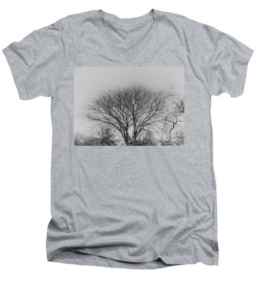 Pale Shades Men's V-Neck T-Shirt