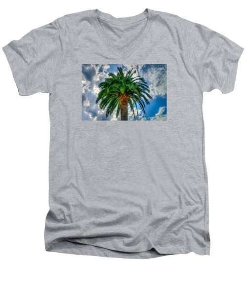 Palm Men's V-Neck T-Shirt by Derek Dean