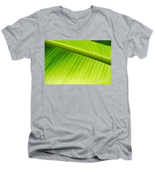 Palm Leaf Background Men's V-Neck T-Shirt by Yurix Sardinelly
