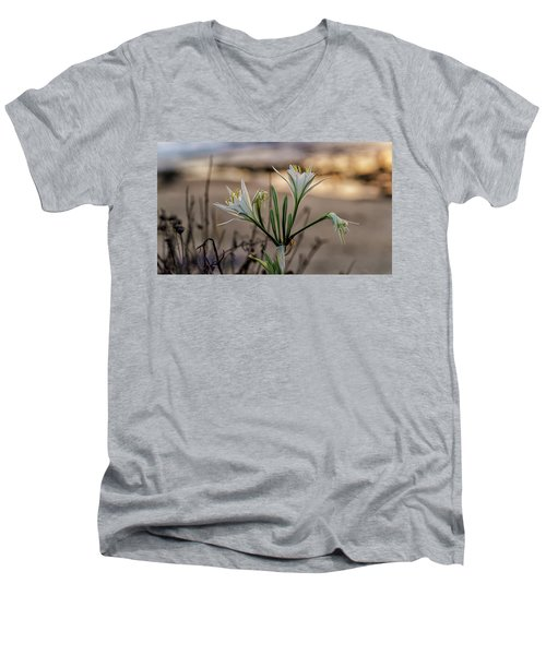Pancratium Maritimum L. Men's V-Neck T-Shirt