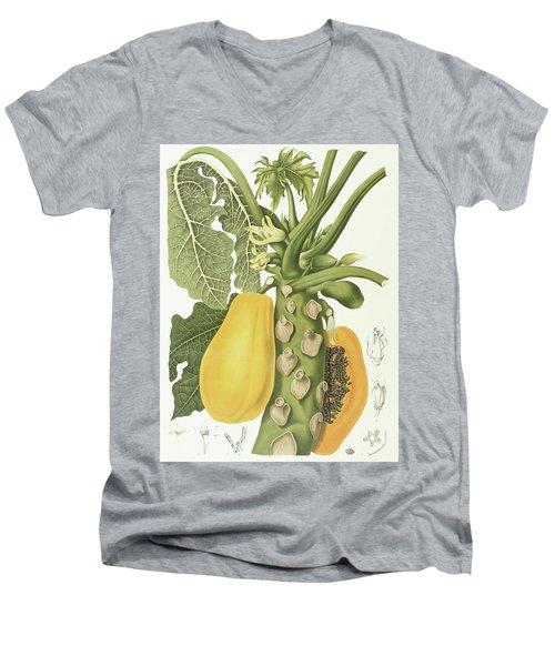 Papaya Men's V-Neck T-Shirt by Berthe Hoola van Nooten