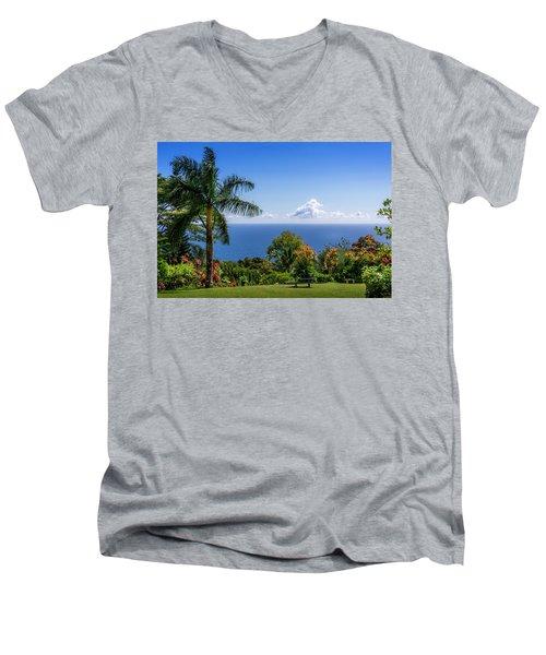 Paradise Picnic Men's V-Neck T-Shirt