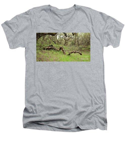 Park Serpent Men's V-Neck T-Shirt