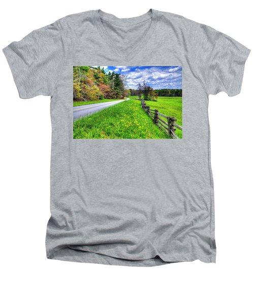 Parkway Spring Men's V-Neck T-Shirt