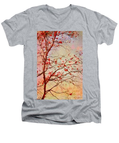 Parsi-parla - D04c03t01 Men's V-Neck T-Shirt
