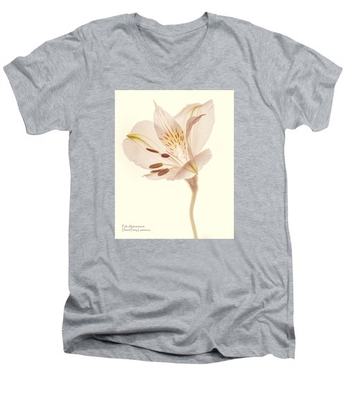Men's V-Neck T-Shirt featuring the photograph Pasae Alstroemeria By Flower Photographer David Perry Lawrence by David Perry Lawrence