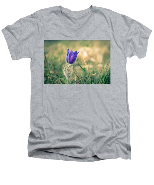 Pasque Flower Men's V-Neck T-Shirt by Andreas Levi