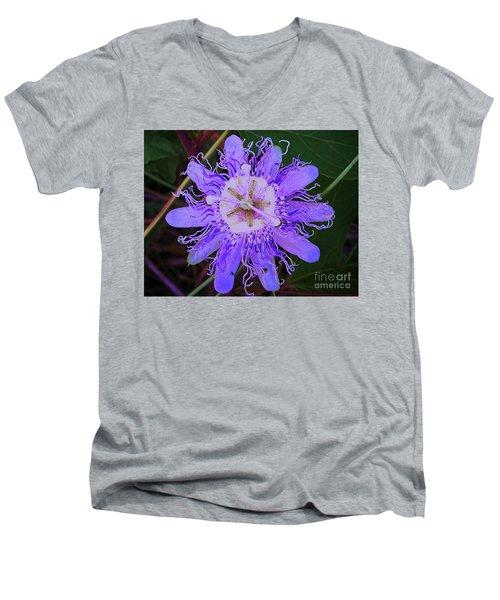 Passion Flower Bloom Men's V-Neck T-Shirt