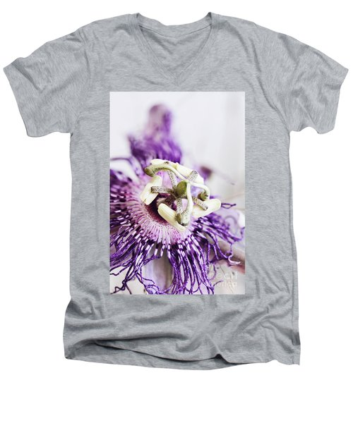 Passion Flower Men's V-Neck T-Shirt by Stephanie Frey
