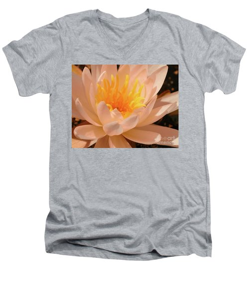 Pastel Pleasures  Men's V-Neck T-Shirt