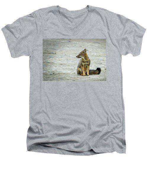 Patagonia Fox - Argentina Men's V-Neck T-Shirt