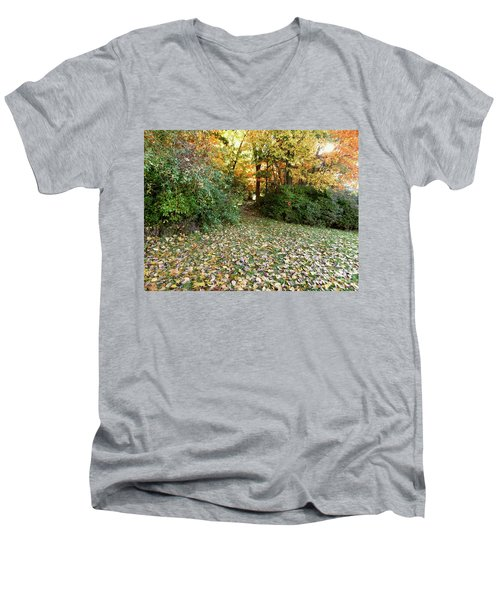 Path Entry Ahead Men's V-Neck T-Shirt