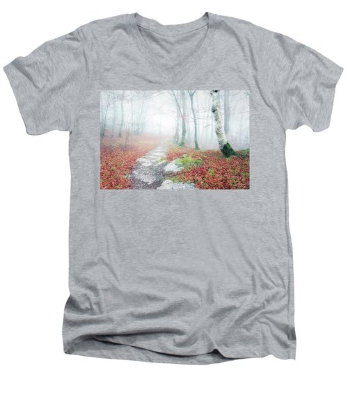 Path In The Forest Men's V-Neck T-Shirt