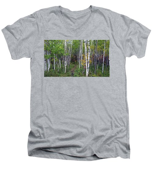Path In The Woods 5 Men's V-Neck T-Shirt