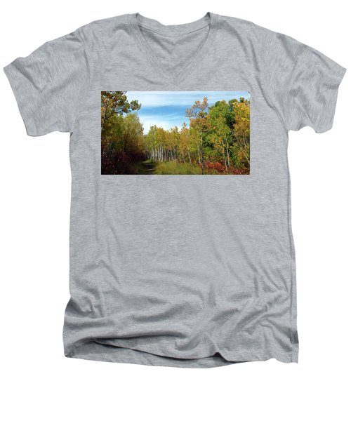Path In The Woods 7 Men's V-Neck T-Shirt