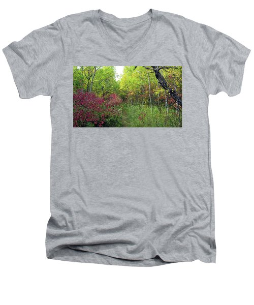 Path In The Woods 8 Men's V-Neck T-Shirt