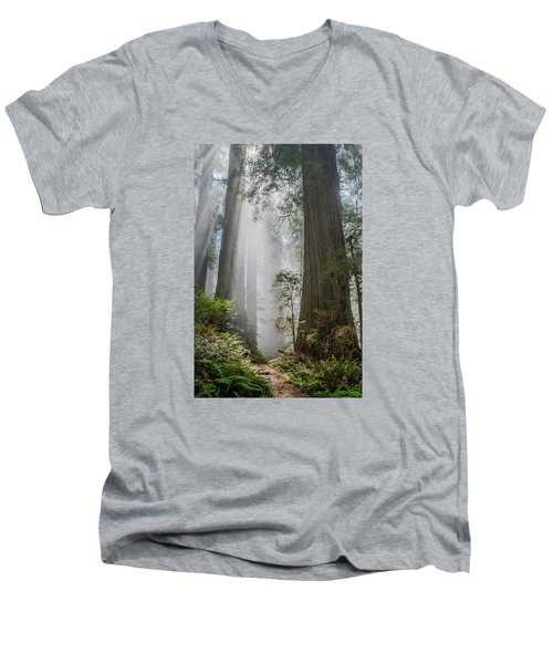 Path Through The Light Men's V-Neck T-Shirt by Greg Nyquist
